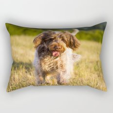 Brown Roan Italian Spinone Dog in Action Rectangular Pillow