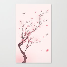 Oriental cherry blossom in spring 003 Canvas Print