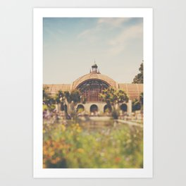 all the colours & curves of the botanical building in Balboa Park, San Diego Art Print