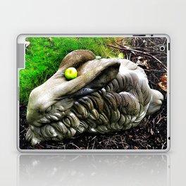 Stone rabbit Laptop & iPad Skin
