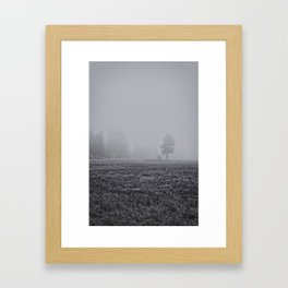 Tree in the Fog  Framed Art Print