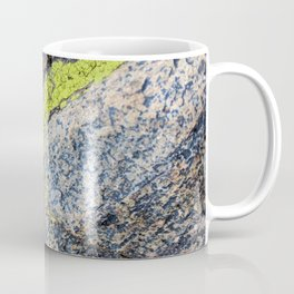 lichen on a hike Coffee Mug