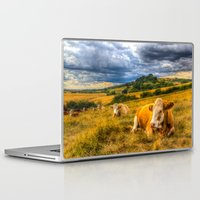 cows Laptop & iPad Skins featuring Resting Cows by David Pyatt