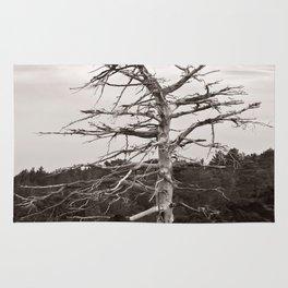 Dead Tree of the Volcano Etna Sicily Rug