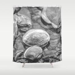 Ice Encased Rocks B&W Shower Curtain
