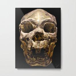 Homo heidelburgensis Metal Print