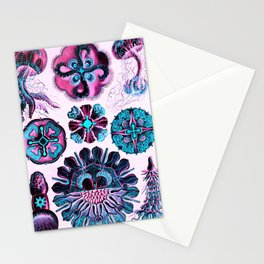Ernst Haeckel Discomedusae 98th Plate pink Stationery Cards
