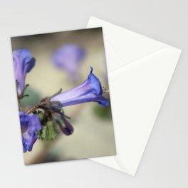 Canterbury Bell 2 Coachella Wildlife Preserve Stationery Cards