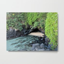 turtle caves close up Metal Print