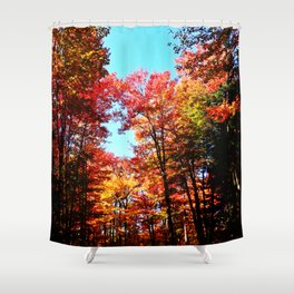 Fall Forest Delight Shower Curtain
