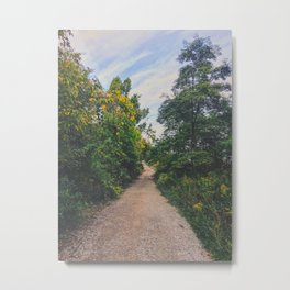 Let's hold hands while we walk Metal Print