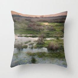 South Willesborough Sunset Throw Pillow