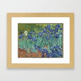 "Vincent Van Gogh ""Irises"" Framed Art Print"