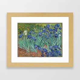 "Vincent Van Gogh ""Irises"" Framed Art Print"