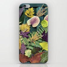 autumn abstract- fallen beauties iPhone & iPod Skin
