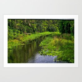 Cross Creek, Florida Waterway Art Print