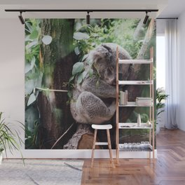 Cute Koala relaxing in a Tree Wall Mural