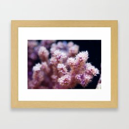 Fall Colors of the Sea Framed Art Print