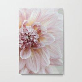 Blush Pink Dahlia, No. 1 Metal Print