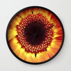 Harvest Sunflower Wall Clock