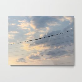 Can we be the bottom birds? Metal Print