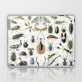 Adolphe Millot- Vintage Insect Print Laptop & iPad Skin