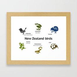 New Zealand Birds Framed Art Print