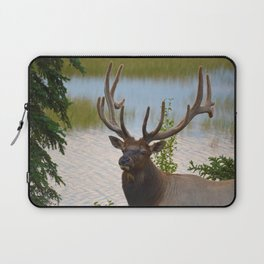 A Bull Elk in the Rocky Mountains Laptop Sleeve