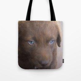 Jacko the Bear Tote Bag