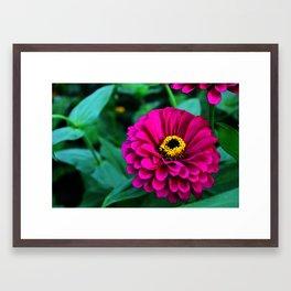 Pop Flower Framed Art Print