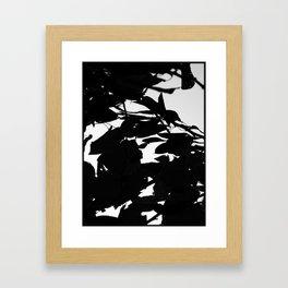 Dark Fall Leaves Framed Art Print