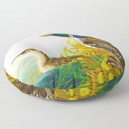 Great Norther Diver or Loon John James Audubon Scientific Birds Of America Illustration Floor Pillow