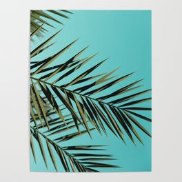 Palm Tree Craze Poster