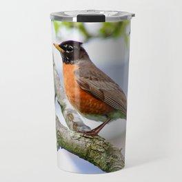 Robin Red Breast Travel Mug