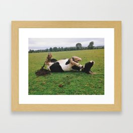 Horse Play in Oxford, England Framed Art Print