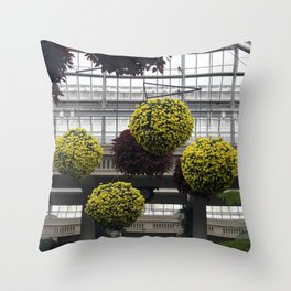 Longwood Gardens Autumn Series 228 Throw Pillow