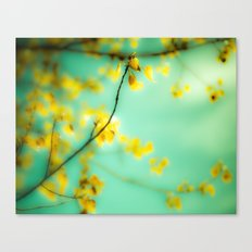 Dream a Little Dream Canvas Print