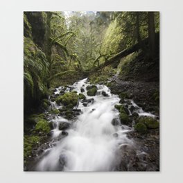 Whitewater Flow Canvas Print