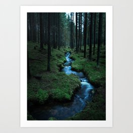 Moody Forest Art Print