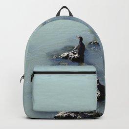 Cormorants Birds on the River Backpack
