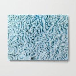 Coral blues Metal Print
