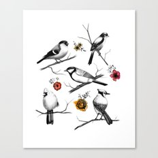 BIRDS & FLOWERS Canvas Print