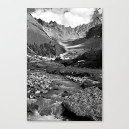 verpeil valley cows river mountains kaunertal tirol austria europe black white Canvas Print