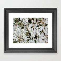 Bridal Veil Framed Art Print