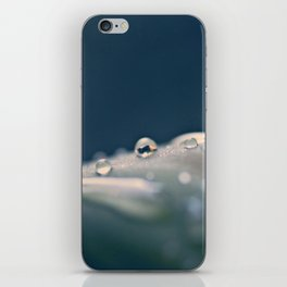 Orbs iPhone Skin