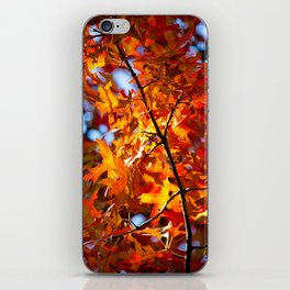 Autumn Leaves in NYC iPhone Skin