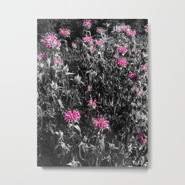 The Pinks and the Greys Metal Print