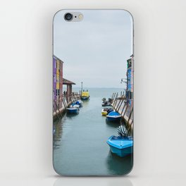 Colors in the Sea iPhone Skin