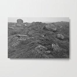Seawall Metal Print