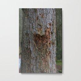 Heart in Bark Metal Print